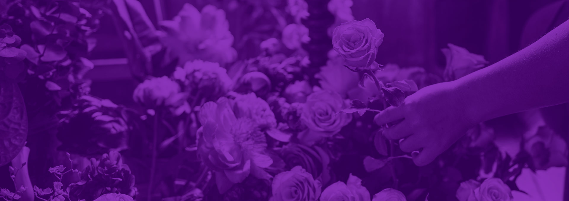FTD Partners With Green Business Bureau To Help Florists With Sustainability