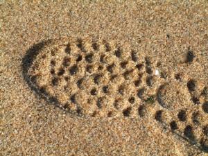Foot prints in GBB BLOG