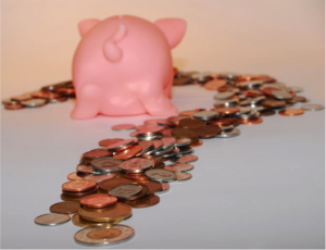 Piggy Bank in GBB BLOG on Green Funds