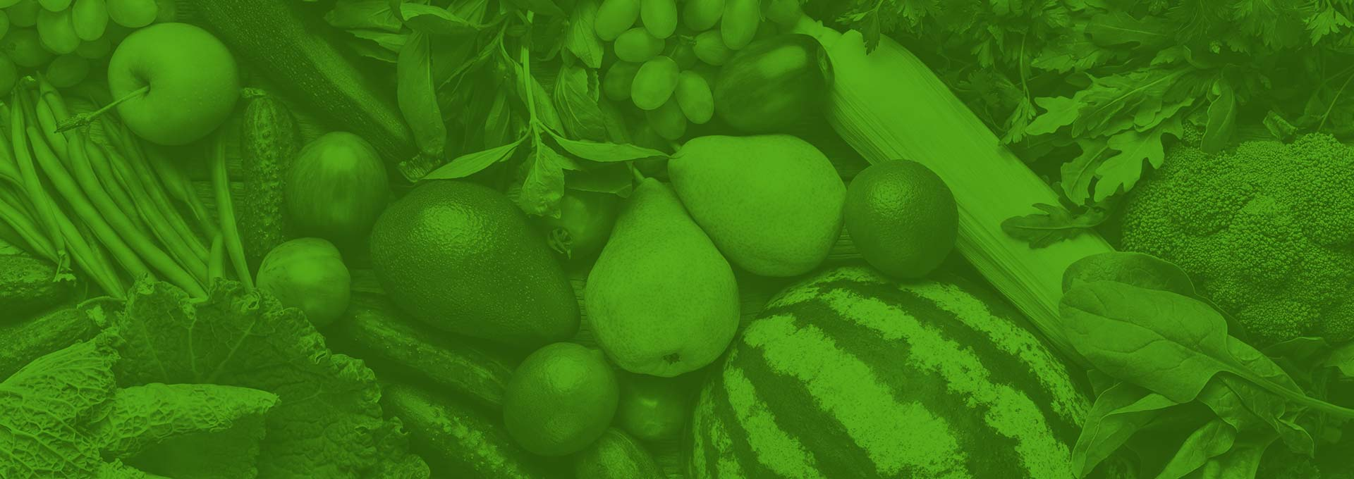Loffredo Fresh Produce – Providing Safe, Healthy Food for 125 Years