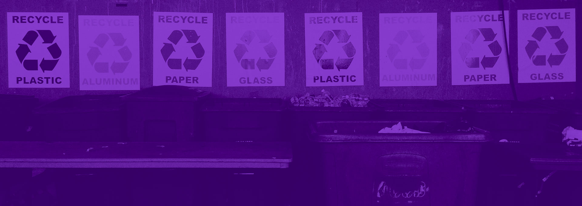 Recycling in the Workplace: Are You Doing It Right?