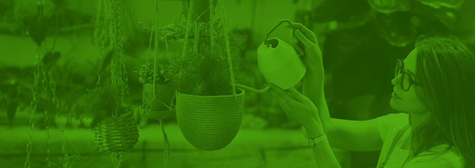 Sustainability Guide for Greenhouses and Nurseries: Getting Started